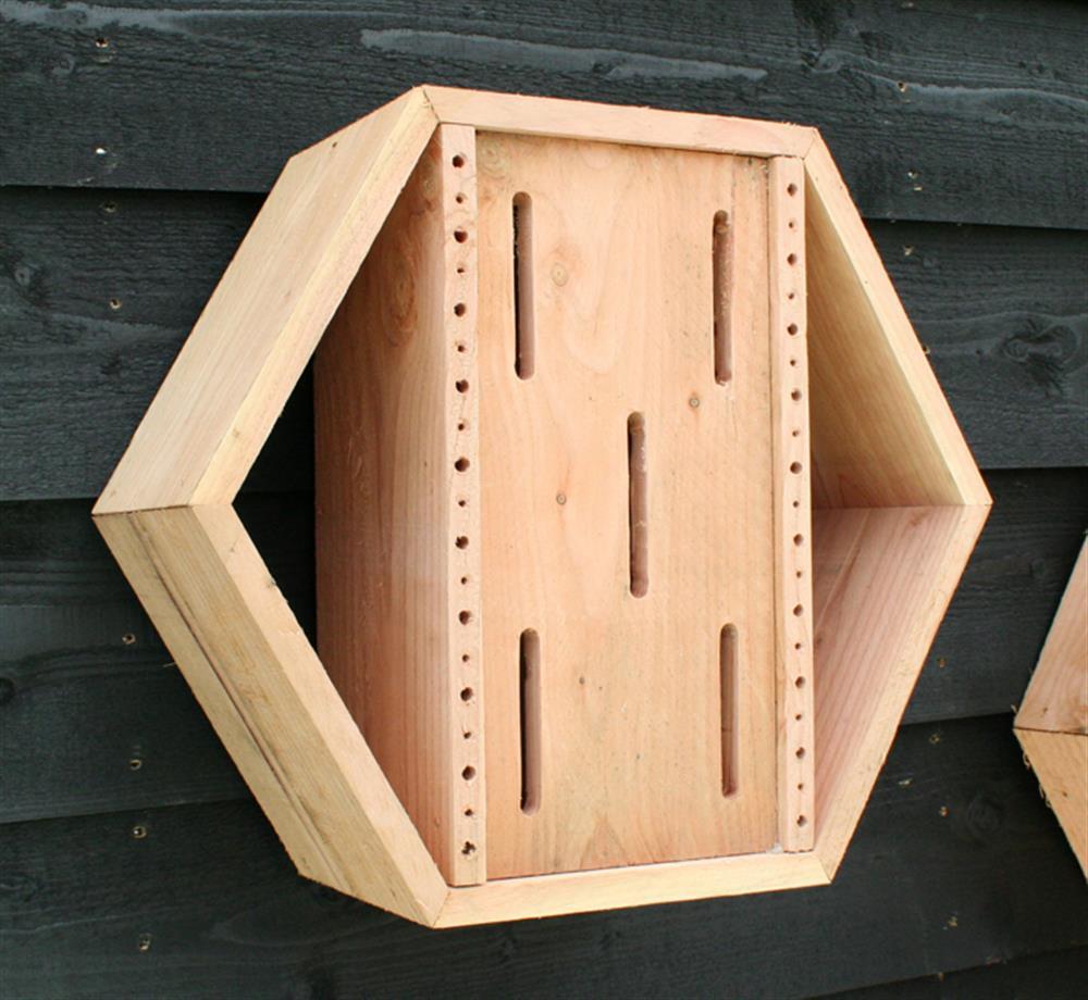 Honingraatsysteem uitbreiding bijen en vlinderhotel