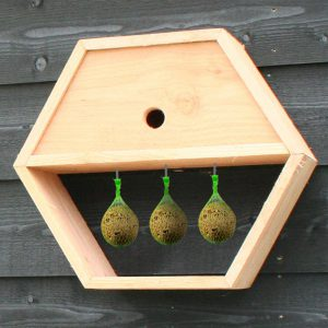 Honingraatsysteem uitbreiding vogelhuis